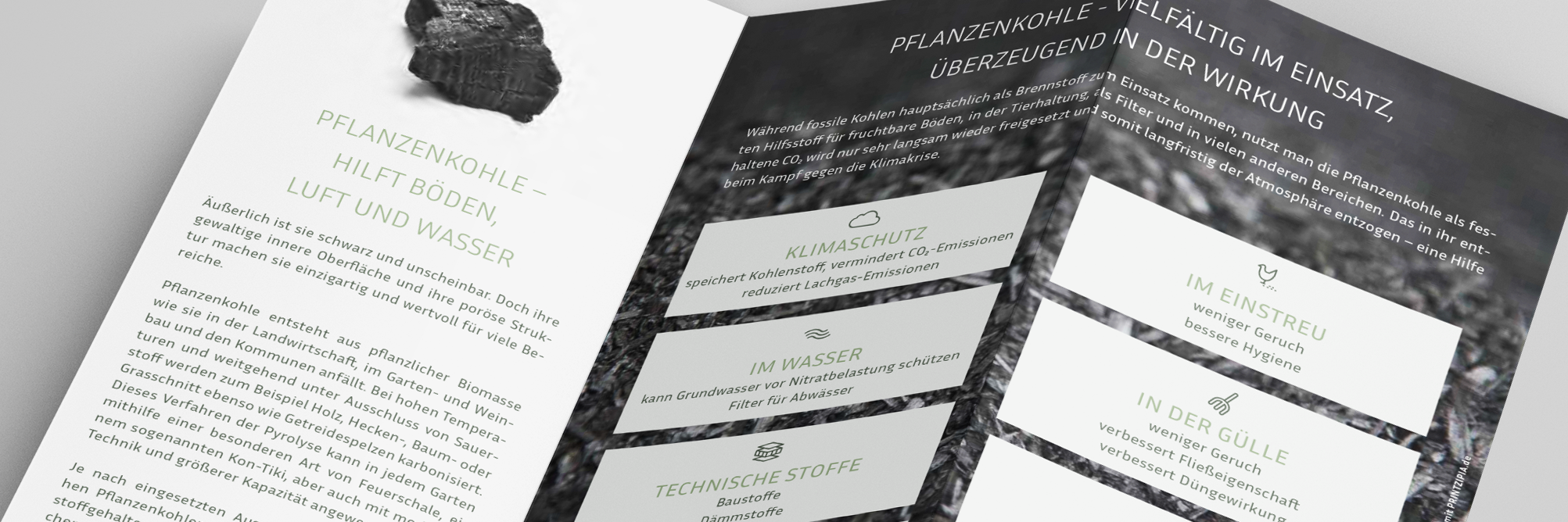 detail of brochure german biochar association
